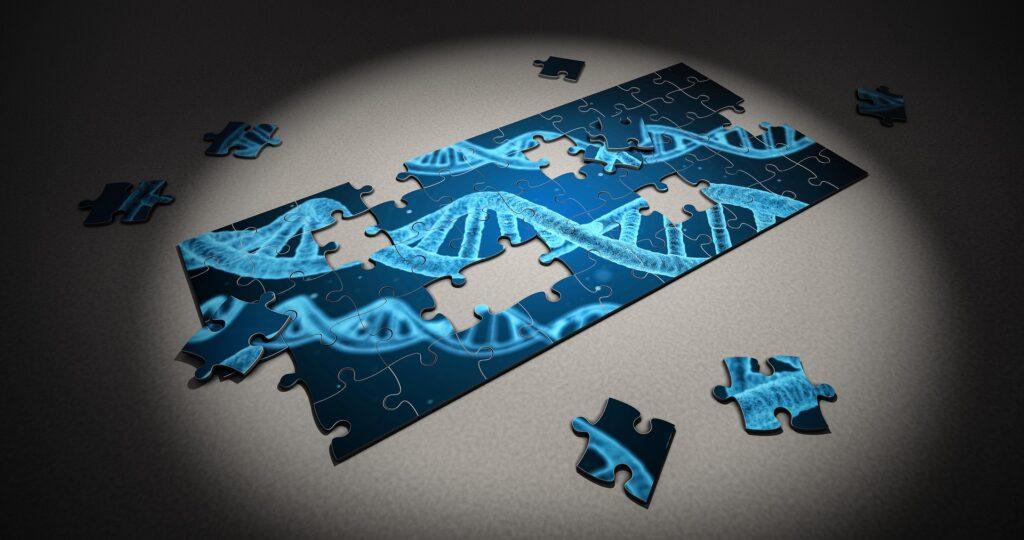 ADN IMMUNITÉ